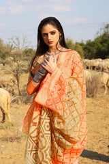 Orange & Green Brasso Saree with Golden Weaving Patterns and Multi Color Brasso Weaving Blouse - RangNeeti - A Complete Online Store for Designer Silk Sarees