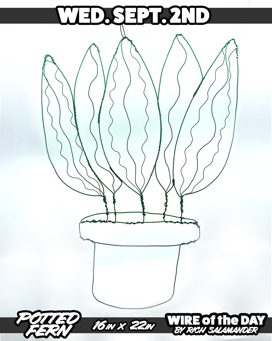 WIRE of the DAY POTTED FERN