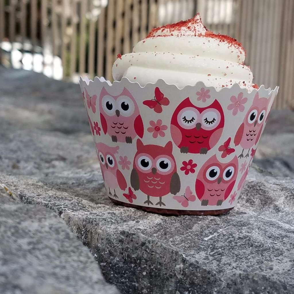Baby Shower Girl Pink Owls Owls Butterflys Cupcake Wrappers