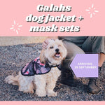 Load image into Gallery viewer, Pink Galahs dog jacket