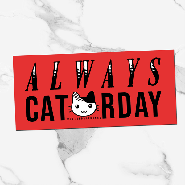 Red Caturday Rectangle | Sticker