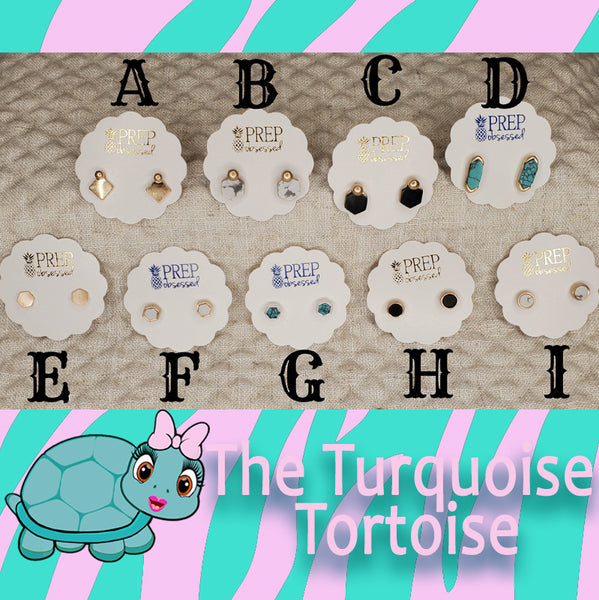Stud Earrings Group C Turquoise Tortoise