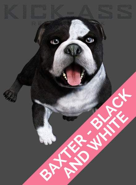BAXTER - BLACK AND WHITE