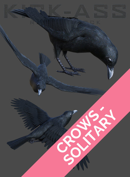 CROWS - SOLITARY