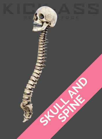 SKULL AND SPINE