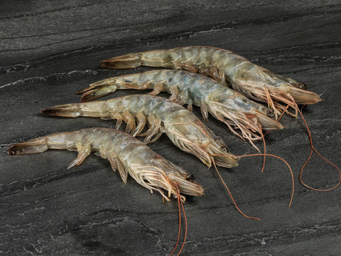 Black Tiger King Prawns - 600g Head On 16/20