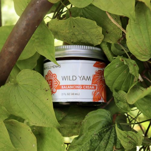 Four Elements Wild Yam Moisture Cream
