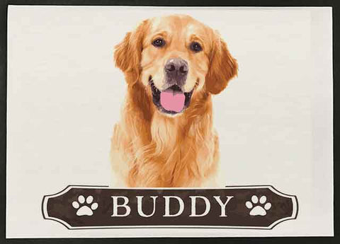 Pet Reflections - Buddy