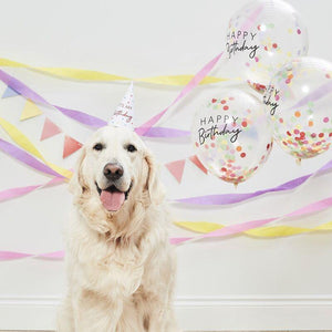 Happy Birthday Pet Party Kit For Dogs & Cats image