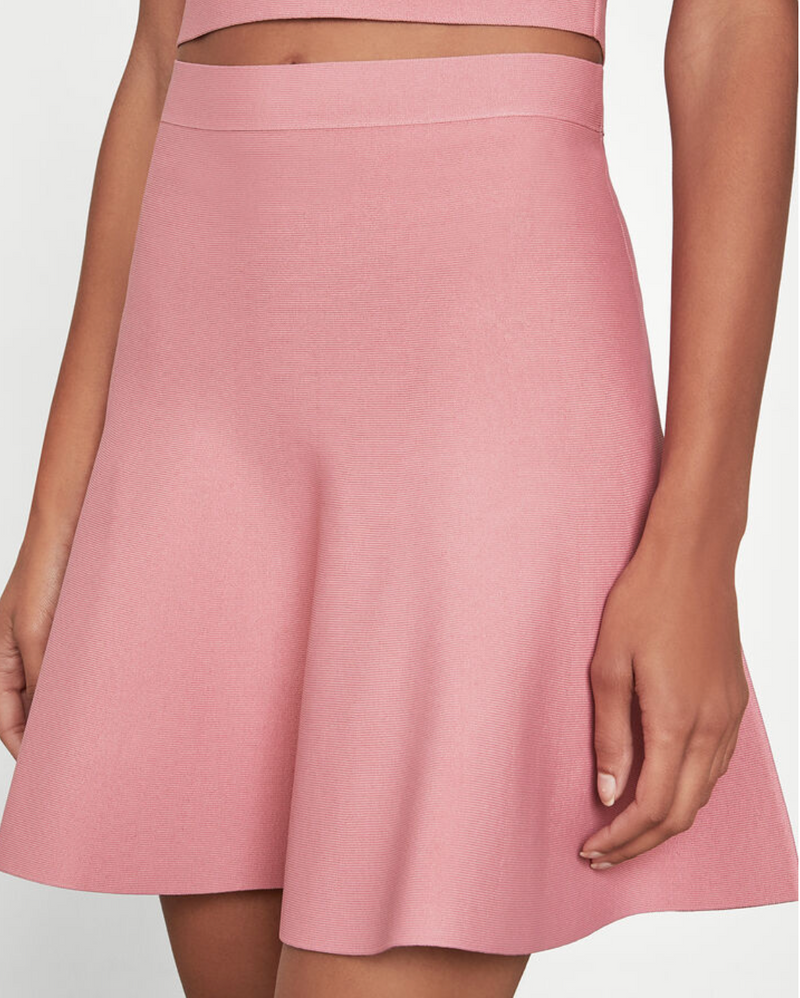 BCBG Maxazria Ingrid Sweater A Line Skirt