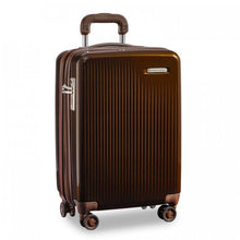 "Load image into Gallery viewer, Sympatico - International Carry-on Spinner 21"" (5786697138340)"