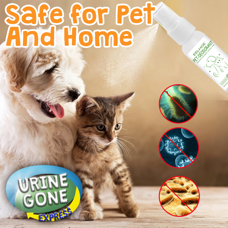Use this pet stain remover directly on dog pee, cat urine or solid waste