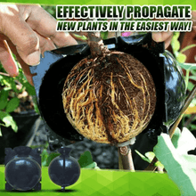 Load image into Gallery viewer, Plant Root Growing Box - Revolutionary Air-Propagation System