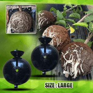 Plant Root Growing Box - Revolutionary Air-Propagation System