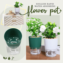 Load image into Gallery viewer, Soilless Rapid Water Absorbing Flower Pot