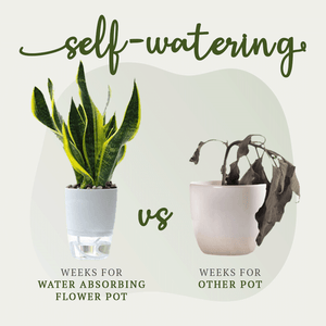 Soilless Rapid Water Absorbing Flower Pot