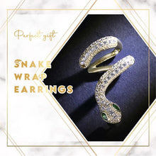 Load image into Gallery viewer, Trendy Snake Wrap Earrings
