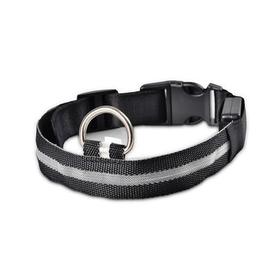 LED Pet Collar - Nylon LED Pet Dog Collar | AD Main Deal