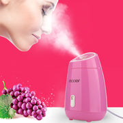 Nano Ionic Warm Mist Facial Steamer - Beauty and Everything