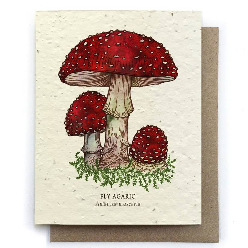 Fly Agaric Mushroom Greeting Cards - Plantable Seed Paper