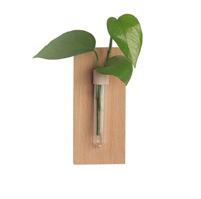 """The Greenhouse"" Set of 2 Wooden Wall Propagation Vessels"