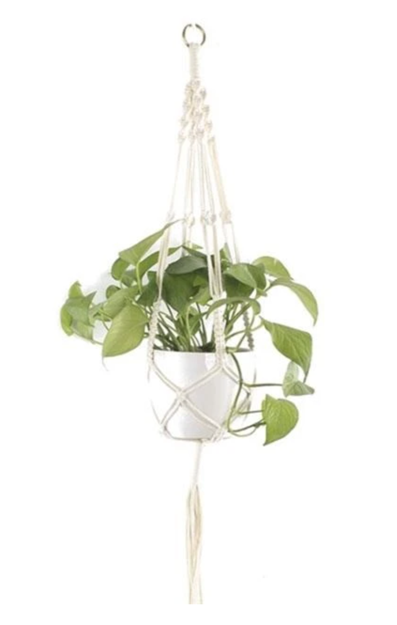 """The Day Dreamer"" Macrame Plant Hangers & Planter Collection"
