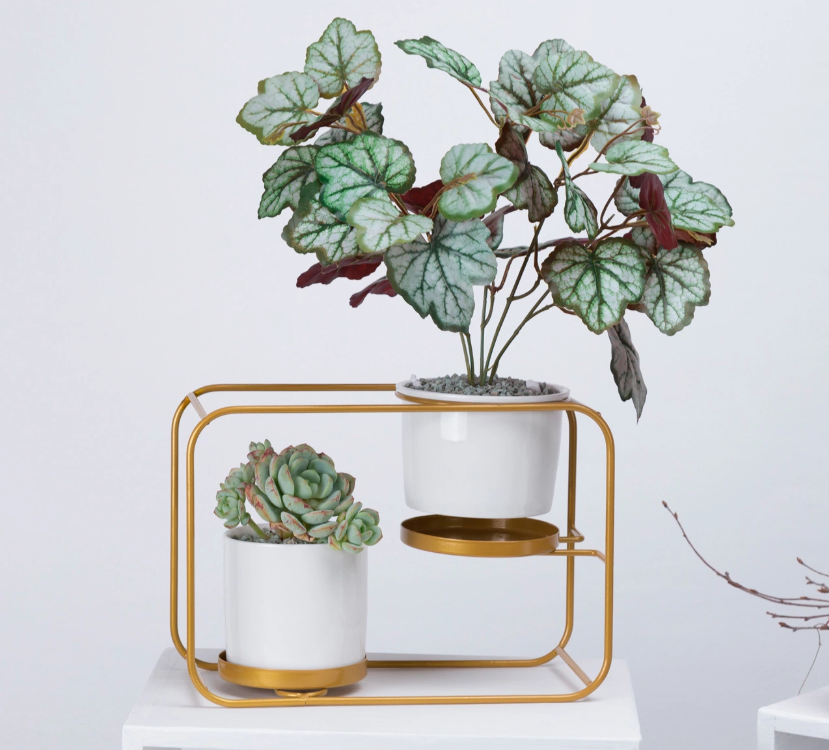 """The Double Decker"" Wall Planter"