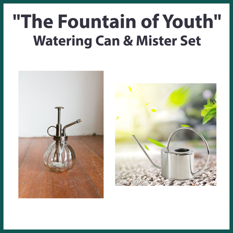 """The Fountain of Youth"" Watering Can & Mister Set"