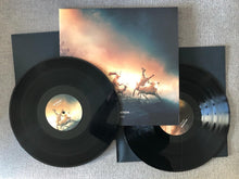 Load image into Gallery viewer, Igneous Polynation vinyl foto