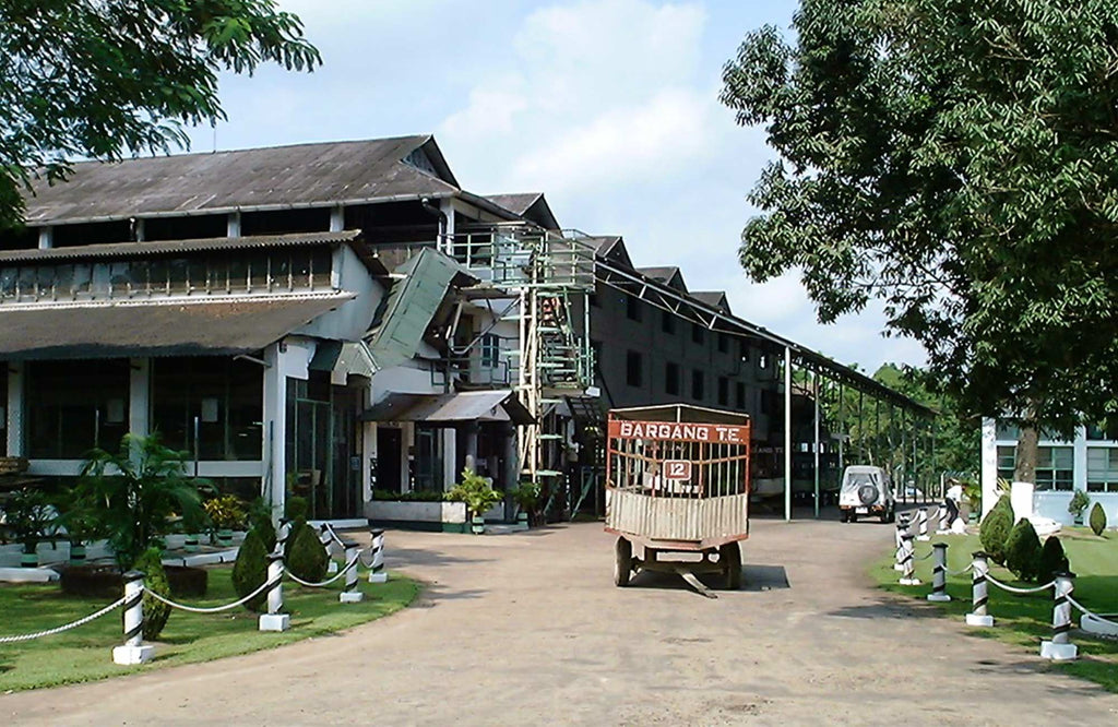 The entrance and factory of Bargang Tea Estate