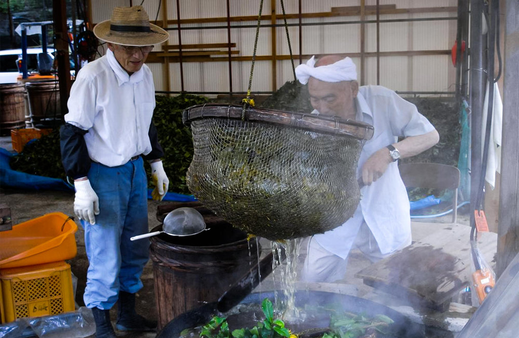 Two Japanese tea farmers boiling Awa Bancha tea leaves