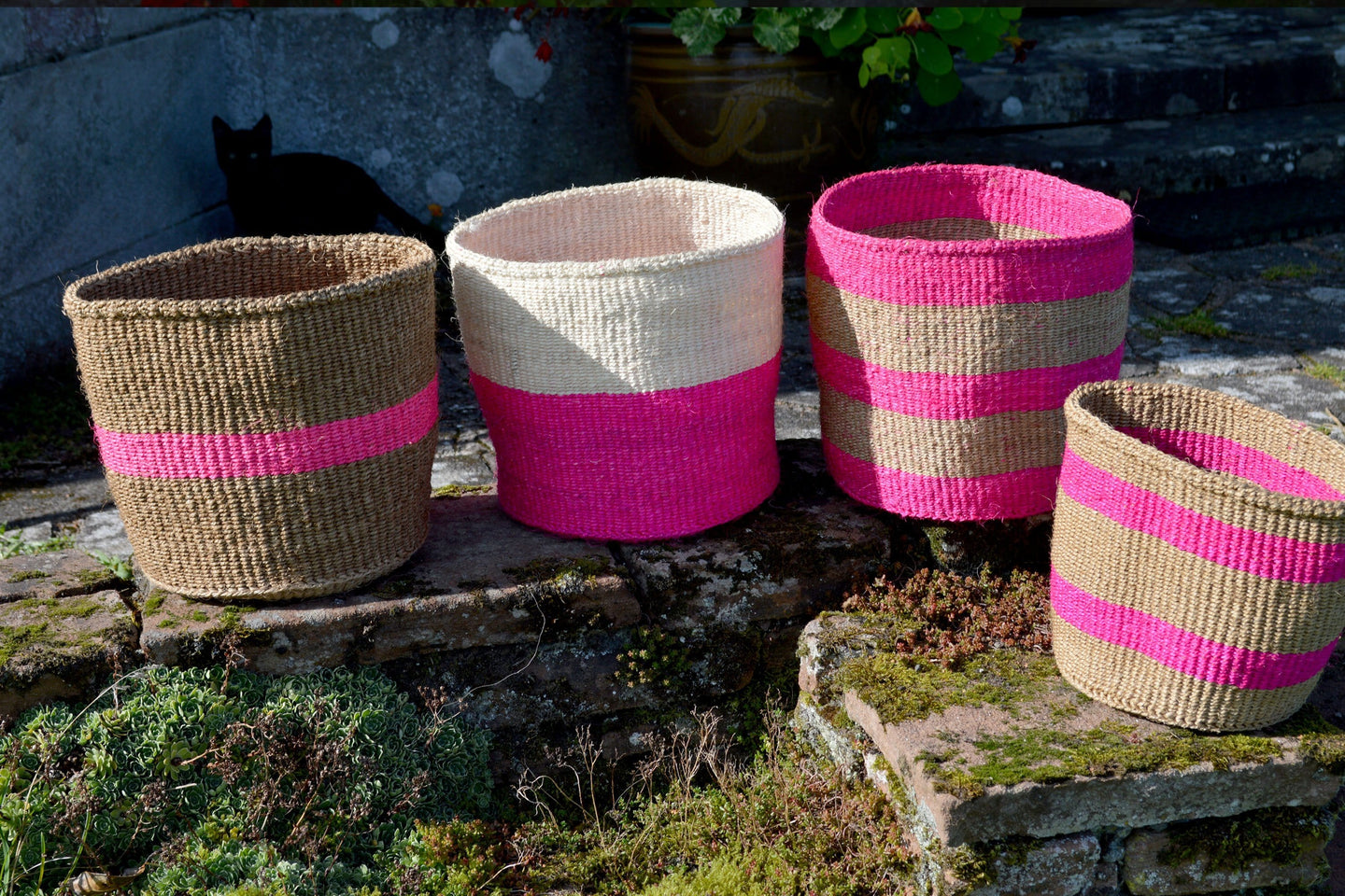 Sisal Bins, in Pink (group 3)