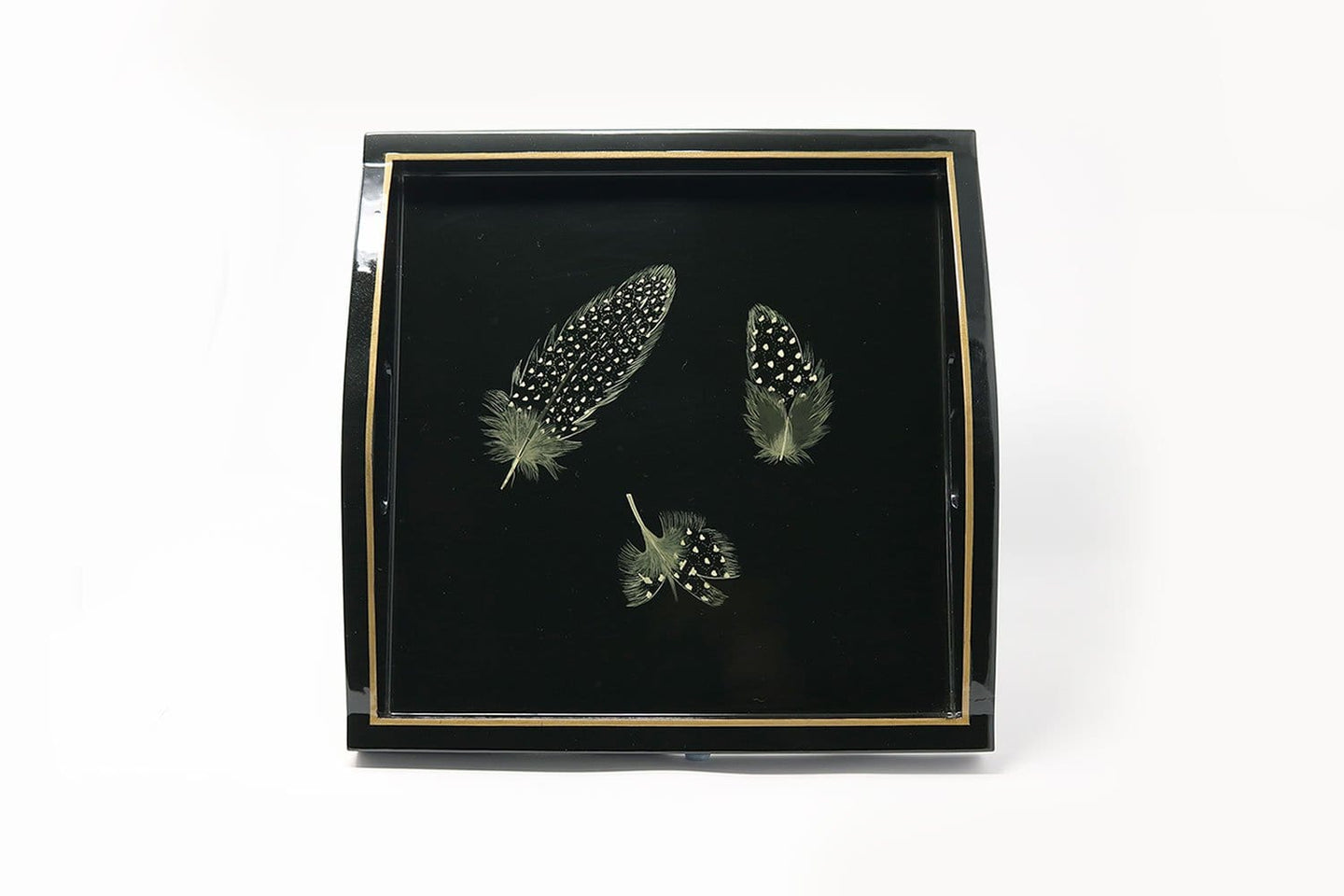 Square Tray, Guineafowl Feathers on Black