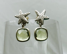 Load image into Gallery viewer, Little Star Stud Earring