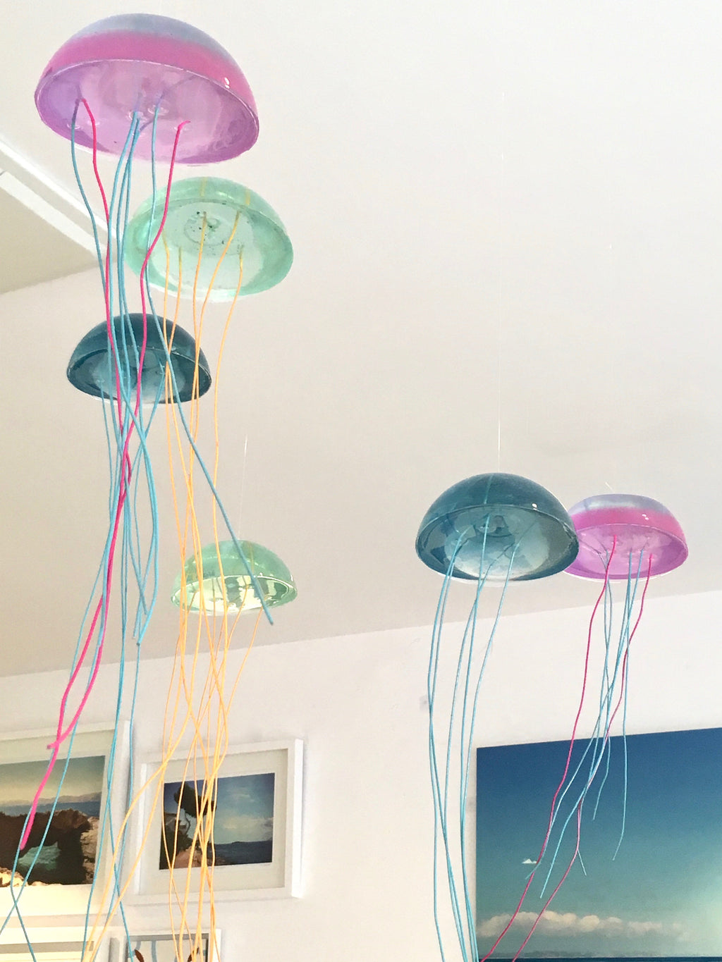 Jellyfish Mobile