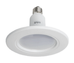 10W Self-Install Retrofit dimmable Ecobulb LED (1795)