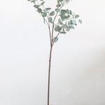 Faux Eucalyptus Branch, 2 Sizes