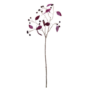 Eucalyptus Berry Branch 35.5""