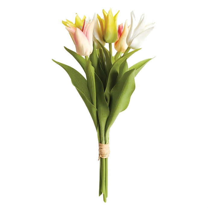 Lily-Flowered Tulip Stems, Bundle of 6