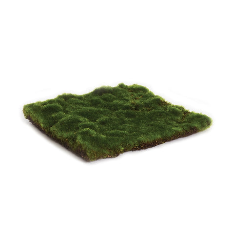 Moss Sheet Square, 2 Sizes