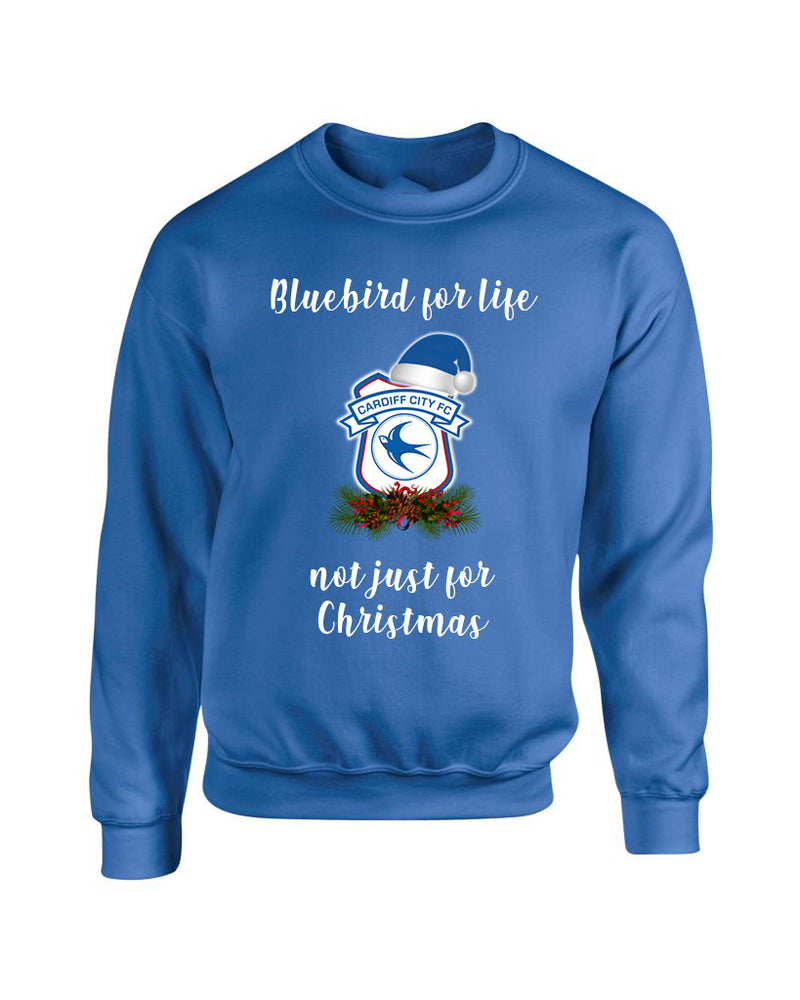 Bluebird for Life not just christmas - Christmas Jumper