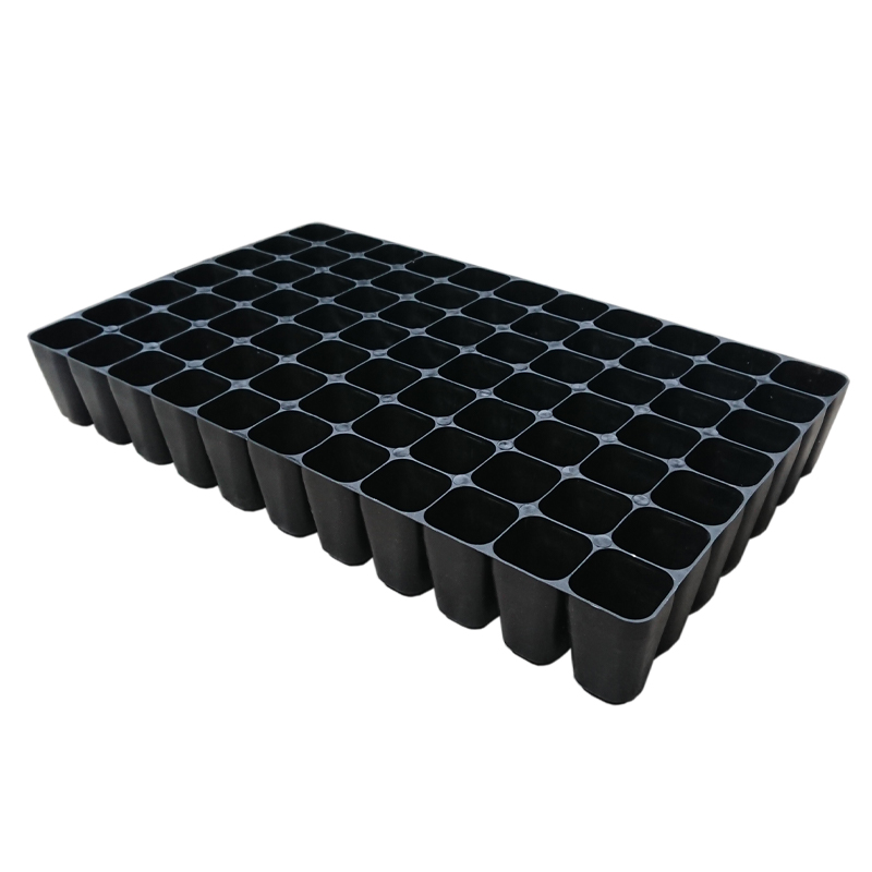 China Plastic Seedling Tray (77 holes) BC350 x 215