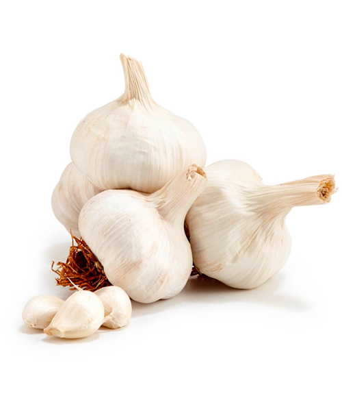 Fresh Garlic (1 lb)