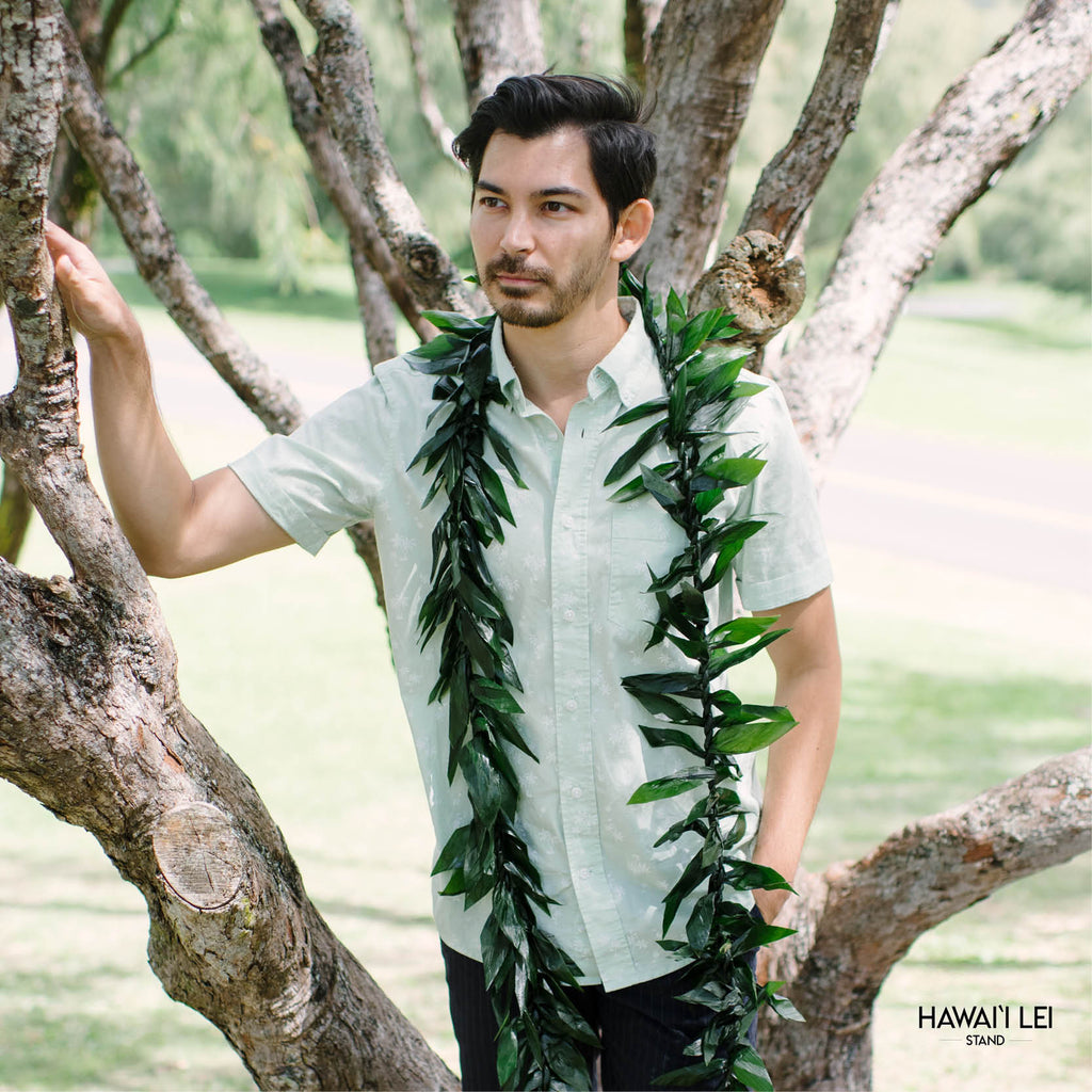Double Ti Leaf Lei Maile Style - Lei Shipping & Delivery From Hawaii Lei Stand