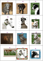 Cards-Greyhound Note Card (Single card w/ white envelope)