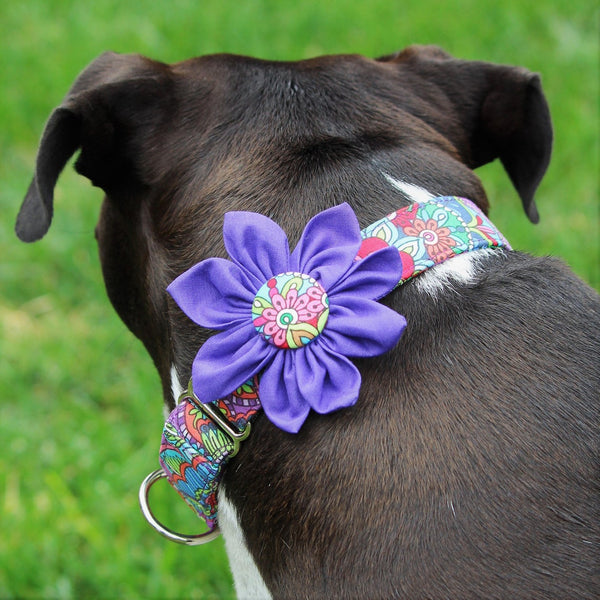 Collar-Martingale Purple Martingale with Removable Flower -3/4""