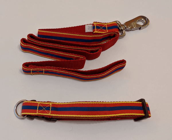 Leash and Collar Combo - Stripes (Red, Blue, and Yellow)