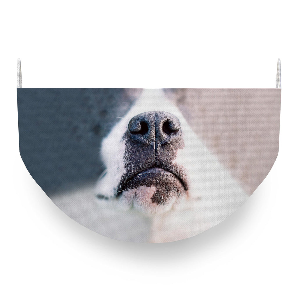 Pit Bull Face Covering