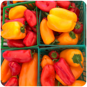Organic Mini Bell Pepper Mix, 3 baskets