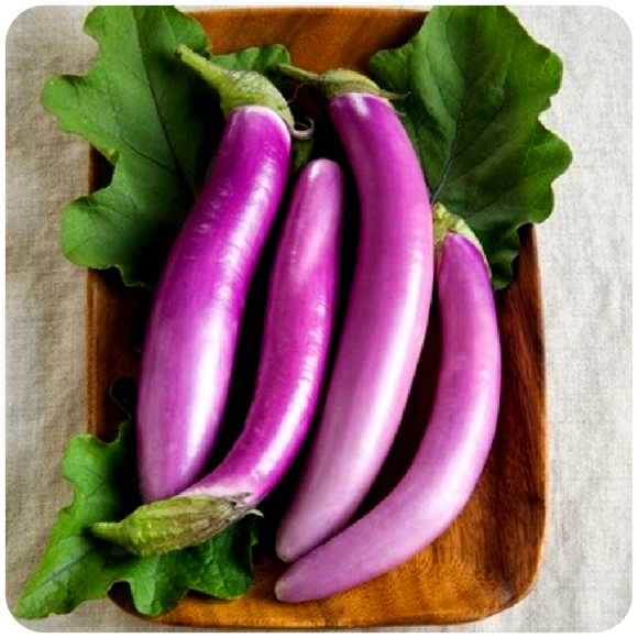 Organic Long Chinese Eggplants, 1.5 lbs